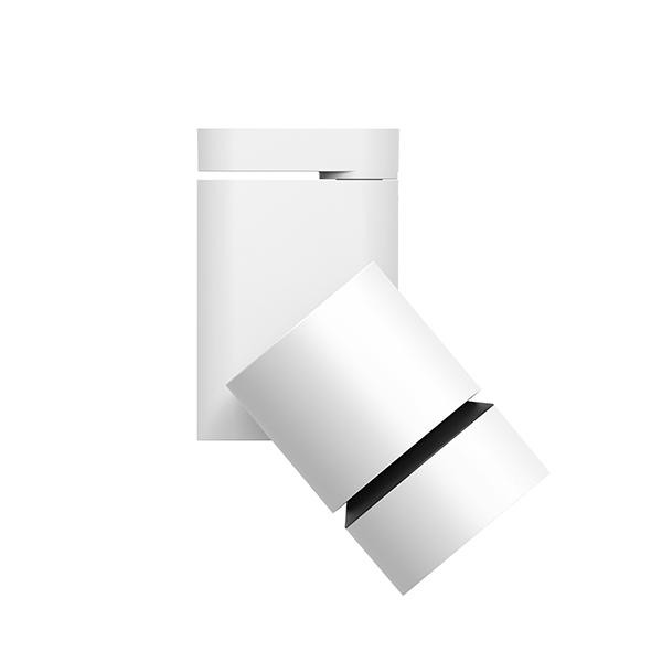 Flos Architectural Pure Solid Ceiling/Wall AN 09.2866.30 White